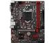 Cartes mères Intel MSI H310M GAMING PLUS Intel® H310 LGA 1151 (Emplacement H4) - 103109