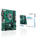 Asus PRIME H310M-C/CSM Intel® H310 LGA 1151 (Emplacement H4)